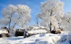 吉林雾凇图片