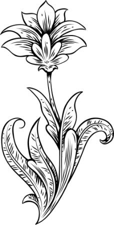 镌刻花卉矢量元素