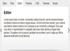 tab标签代码图片