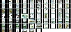 景观规划设计ppt模板