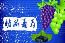 水果 葡萄图片