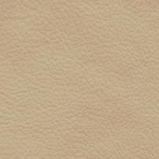 特殊纹理 文化石 皮革 免费素材