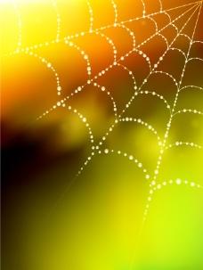 蜘蛛网矢量图