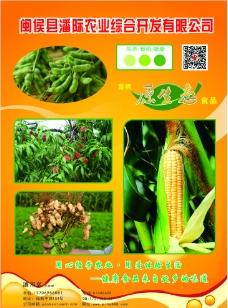 生态农业宣传页图片