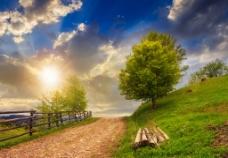 阳光大自然图片