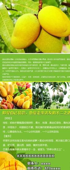 水果易拉宝图片