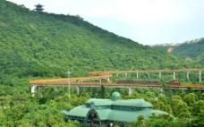 森林小火车图片