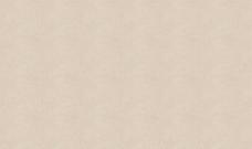 纸的背景295