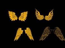 动物大型翅膀