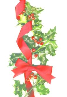 圣诞背景与冬青树和红色的弓