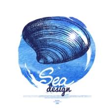 手绘贝壳图片