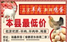 正宗羊肉新鲜鸡蛋宣传图片