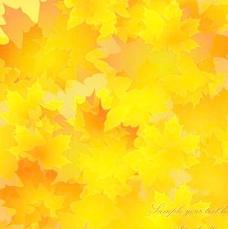 金色的秋天树叶背景矢量素材2