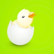 复活节快乐的背景或卡与可爱的小鸡从蛋在有光泽的绿色背景
