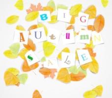 创造性的秋季拍卖设计矢量图01