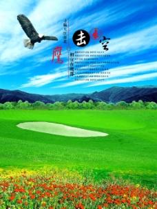 蓝天 鹰击长空 绿色草地 海报背景