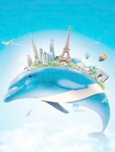 海豚追逐梦 下载
