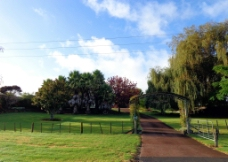 新西兰风景图片