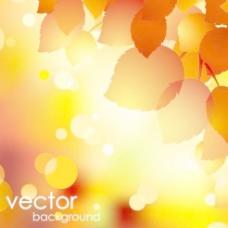 美丽的秋天的背景矢量素材01