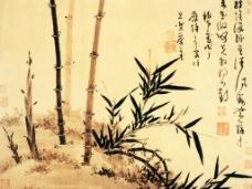 竹子 国画图片