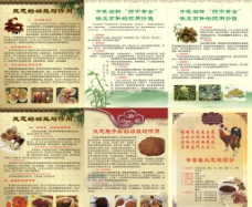 灵芝 铁皮石斛 灵芝孢子粉图片