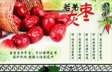 红枣宣传图片