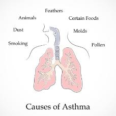 哮喘矢量世界哮喘日的原因