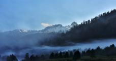 西藏鲁朗图片