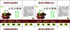 樱桃包装盒平面图图片