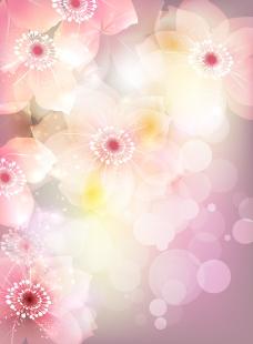 绚烂的花朵插画矢量
