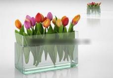 精美的鲜花模型