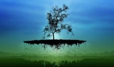 腾空树图片