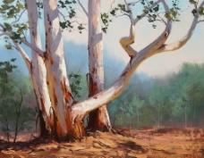 油画大树图片