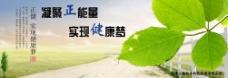 网站首页宣传图 公司口号 绿色环保