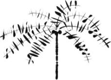 椰子树的剪辑艺术2