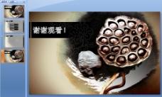 古典莲花中国风