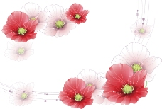 红花白底背景图