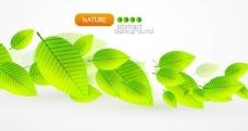 动感绿叶背景图片