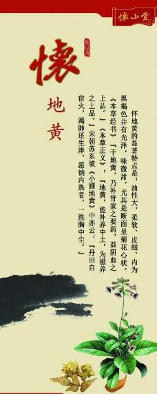 怀山堂 怀地黄图片
