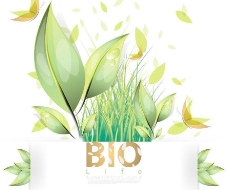 动感线条蝴蝶绿叶水珠水滴环保背景图片