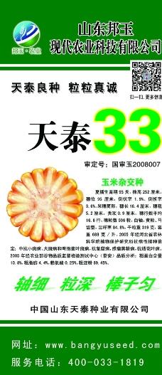 天泰33图片
