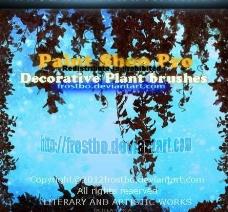 装饰植物ps画笔工具