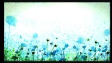 卡通抽象花朵视频素材