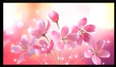 花朵星光舞台背景视频