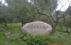 石刻词牌图片