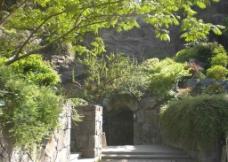 辰山植物园步道图片