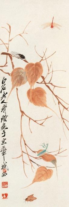 贝叶草虫图片