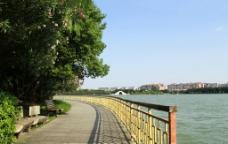 西湖小路 木板路图片