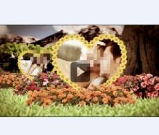 开场温馨浪漫婚礼花园展示婚礼照片