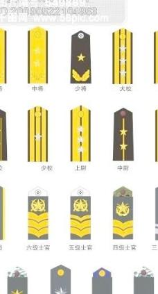 中国人民解放军海军军衔图